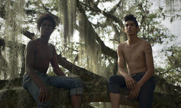 Image du film Los Hongos