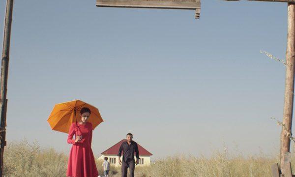 Image du film La tendre indifférence du monde